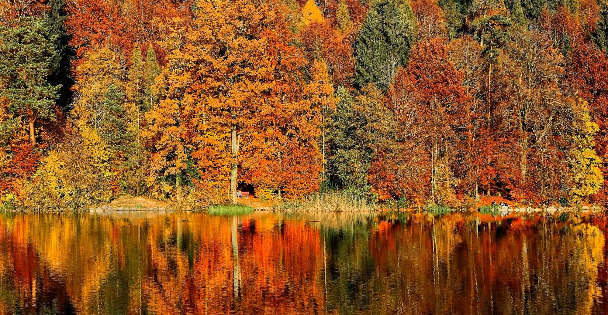 Fall in the Valley 2015