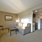 Executive Suite Kitchen and Sitting Area