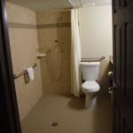 Accessible Queen Bathroom
