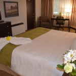 Luxury King Suite with Flowers and Robe