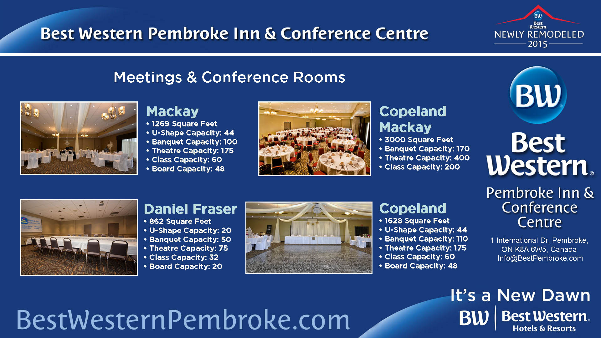 Business Conference Options