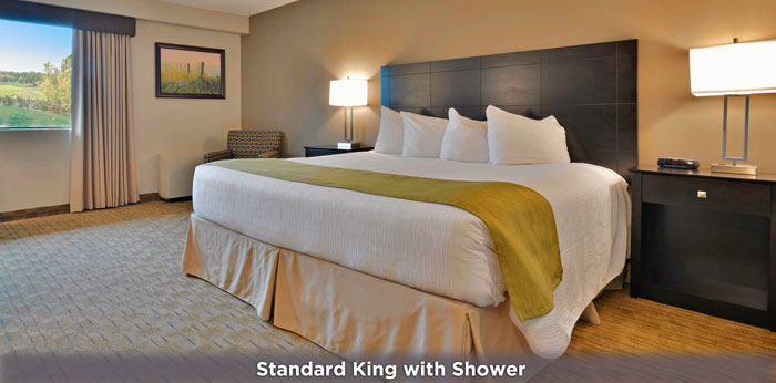 Feature-Standard-King-Bedroom