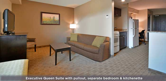Executive Suite with kitchen, sitting area and separate bedroom