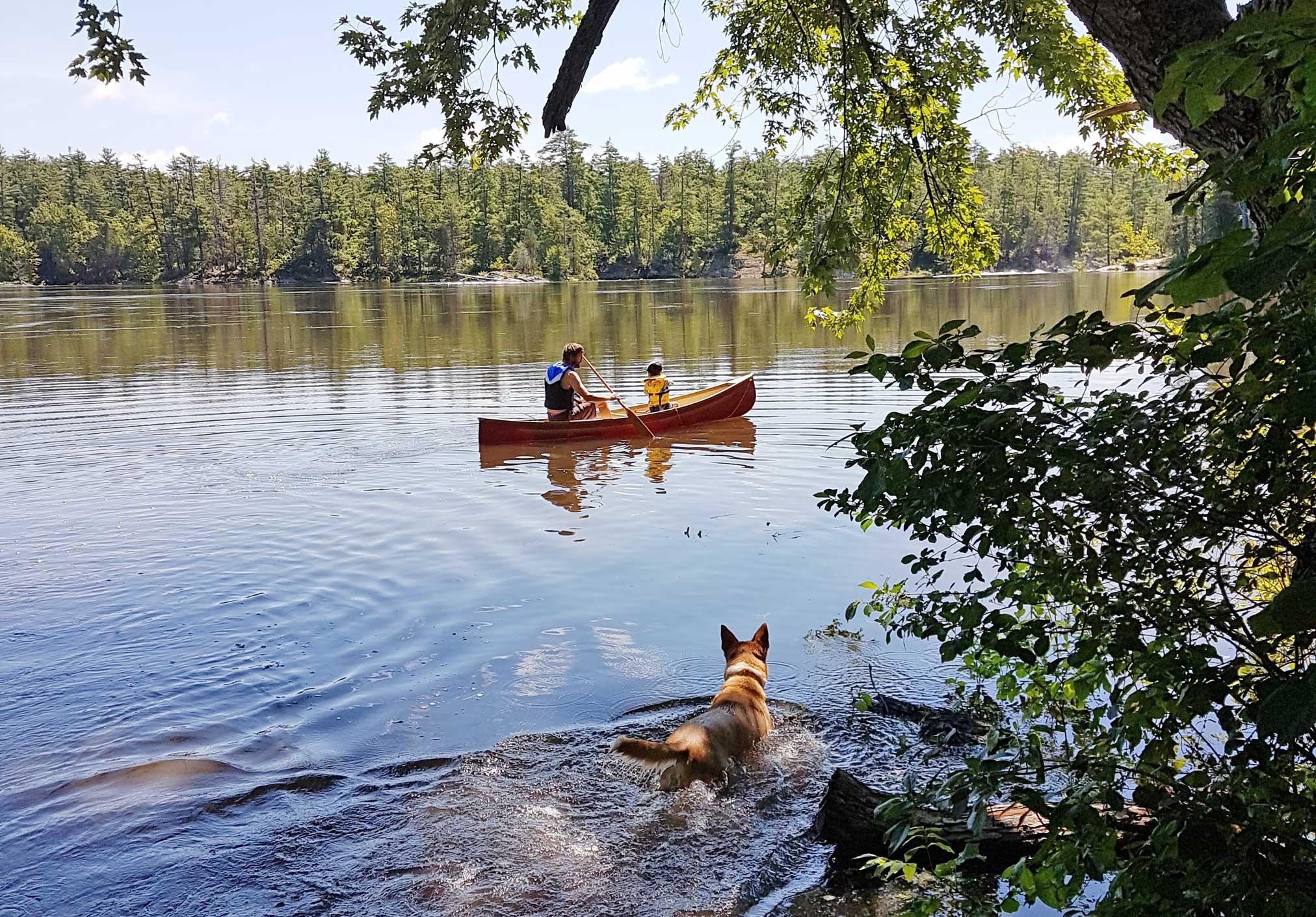 Algonquin Provincial Park Canoe Adventure