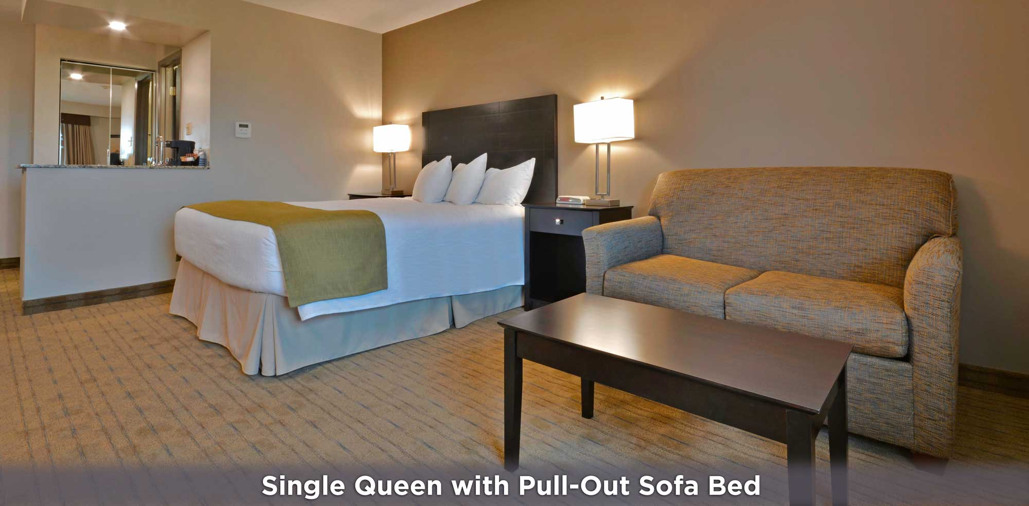 Single Queen with Pull-Out Sofa Bed