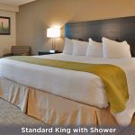 One King Bed