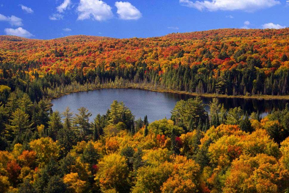 Algonquin Provincial Park in Ontario